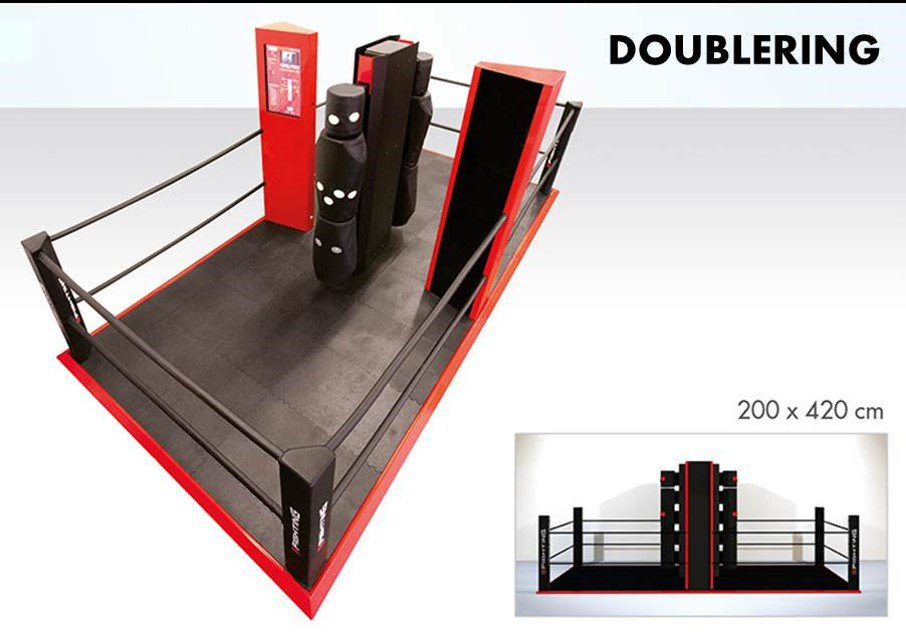 eFighting Double Ring