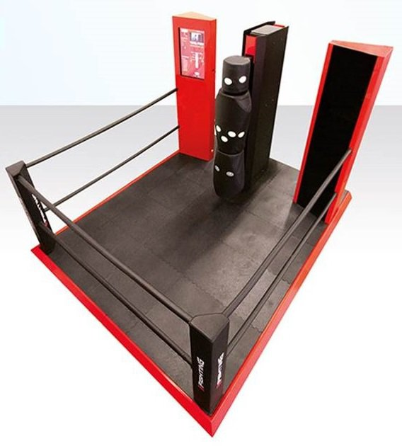 eFighting Ring
